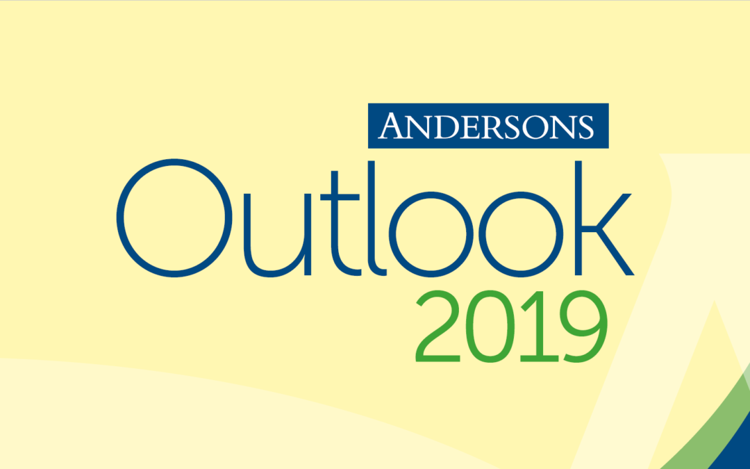 Andersons Outlook 2019